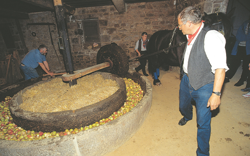 Cider being made the traditional way