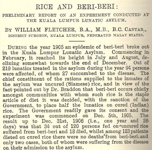 1907 report on Berberi