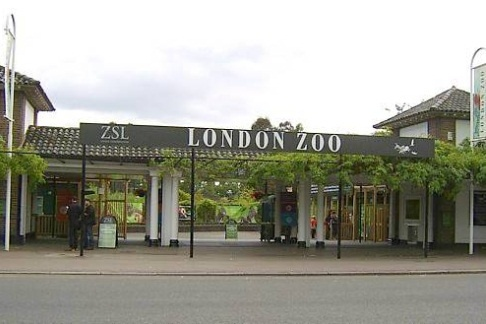 London zoo entrance