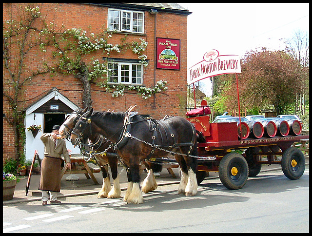Shire Horse & cart delivering Beer